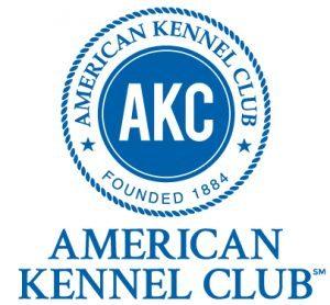 Wzorzec rasy wg American Kennel Club
